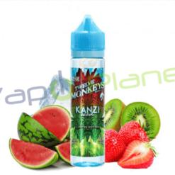 Kanzi Ice Age (Booster 50 ml) – 12 Monkeys