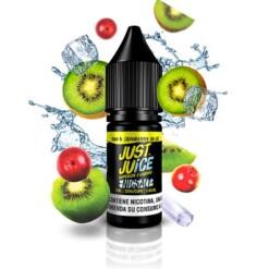 Nic Salt Kiwi & Cranberry on Ice 10ml – Just Juice