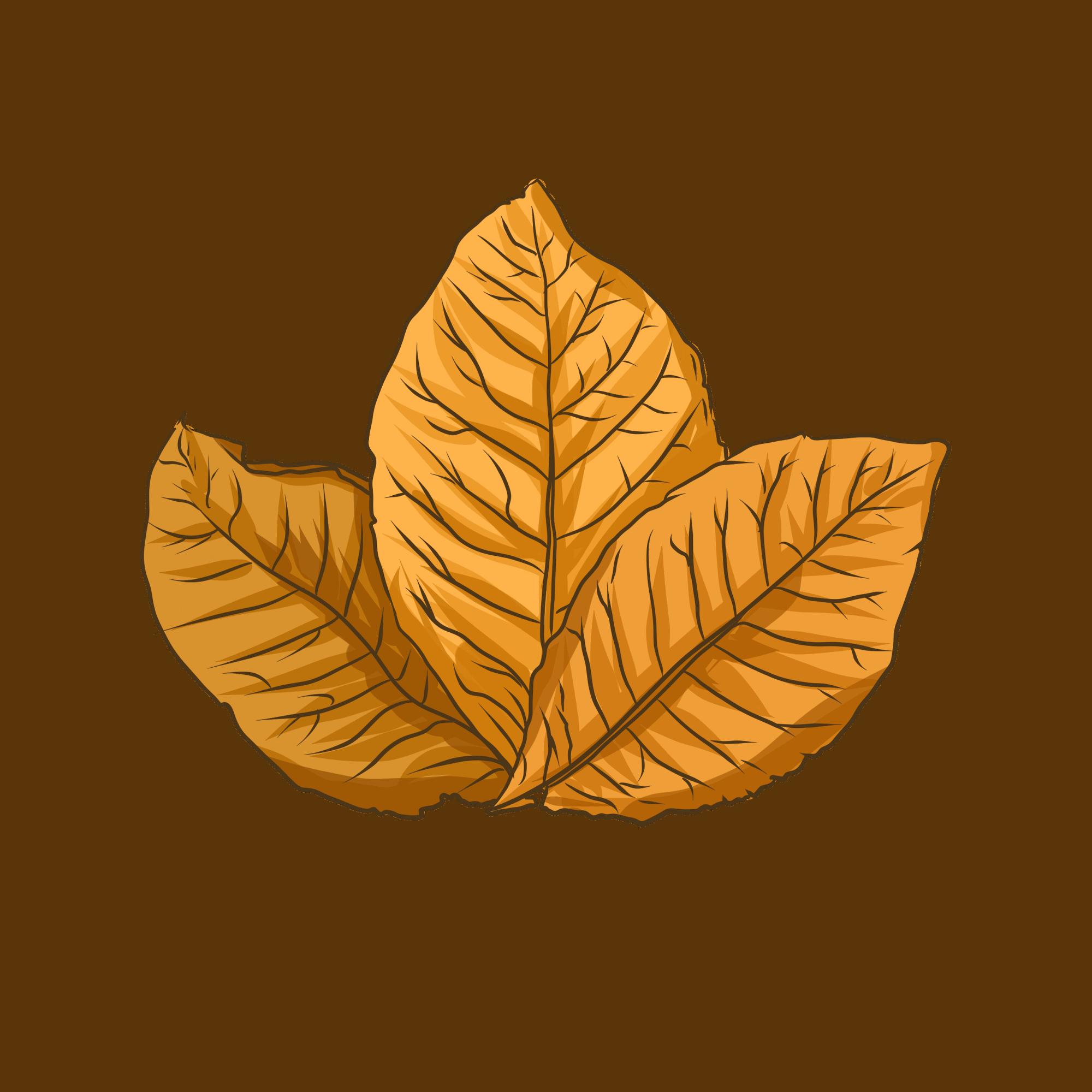 —Pngtree—tobacco leaf
