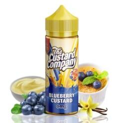 the custard company blueberry custard ml