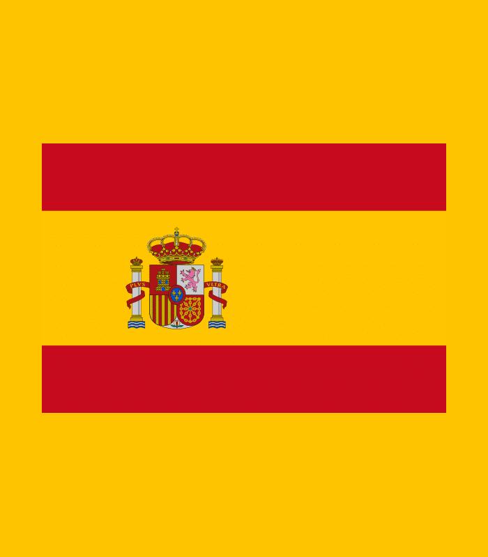 bordado bandera espana